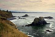 Oregon Coast 17 Print by Marty Koch