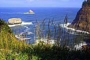 Oregon Coast 4 Print by Marty Koch