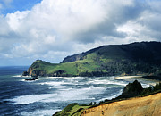 Lincoln City Photo Posters - Oregon Coast Cliffs Poster by Elias Carlson