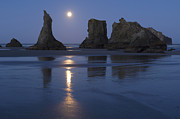 Oregon Coast Print by John Shaw and Photo Researchers