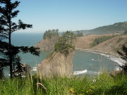 Bonita Waitl - Oregon Coast near...