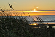 Sunset Seascape Prints - Oregon Coast Sunset Print by Liz Vernand
