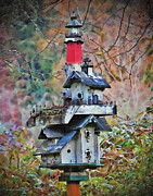 Alice Martin - Oregon Coastal Birdhouse