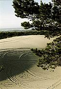 Dunebuggy Prints - Oregon Dunes 3 Print by Eike Kistenmacher