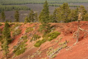 Deschutes Prints - Oregon Landscape - Red Crater Print by Carol Groenen