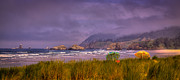 Sandy Beaches Posters - Oregon Seascape Poster by David Patterson