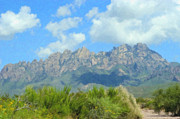 Rio Grand Framed Prints - Organ Mountains 1 Framed Print by Steve Bailey