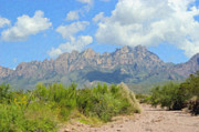 Rio Grand Framed Prints - Organ Mountains 2 Framed Print by Steve Bailey