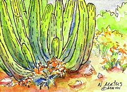 Southwest Prints - Organ Pipe Print by Nancy Matus