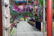 Gardens Digital Art Originals - Oriental Dream Garden by J M Chupek