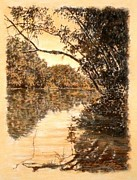 River Scenes Drawings - ORIGINAL Reflecting Limb Saluda River by Michael Story