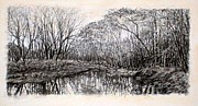 River Scenes Drawings - ORIGINAL Winter Thicket by Michael Story