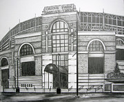 Oriole Drawings Metal Prints - Oriole Park Camden Yards Metal Print by Juliana Dube