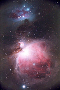 Dust* Posters - Orion Nebula Poster by Chris Madeley