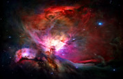 Galaxy Posters - Orion Nebula Poster by Michael Tompsett