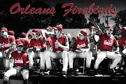 Team Digital Art Posters - Orleans Firebirds Baseball Team Poster by Dapixara Art