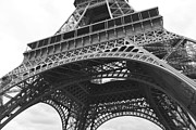 Black And White Paris Posters - Ornate Eiffel Tower Poster by Carol Groenen