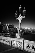 Coat Of Arms Posters - ornate westminster bridge lamp and coat of arms London England UK United kingdom Poster by Joe Fox