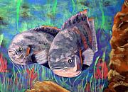 Fish Underwater Painting Originals - Oscars by Linda Hiller