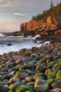 Seacoast Posters - Otter Cliffs At Sunrise Poster by Stephen  Vecchiotti