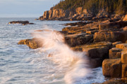 Binh Ly - Otter Point Waves Acadia...