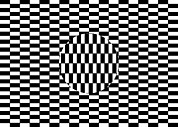 Illusory Art - Ouchi Illusion by