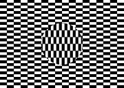 Ambiguity Photos - Ouchi Illusion by SPL and Photo Researchers
