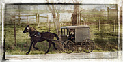 Amish Buggy Photos - Out For A Ride by Kathy Jennings