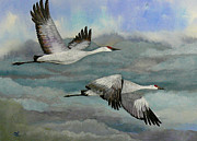Crane Migration Prints - Out of the Storm Print by Dee Carpenter
