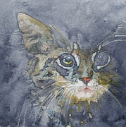 Feline Paintings - Out The Blue You Came To Me by Paul Lovering