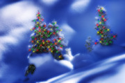 Outdoor Christmas Trees Print by Utah Images