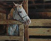 Horse Stable Painting Posters - Outdoor Girl Poster by Jim Clements