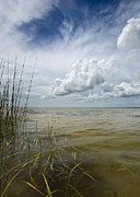 Outer Banks Coastline Print by Matt Tilghman