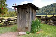 Outhouse Prints - Outhouse Print by David Lee Thompson
