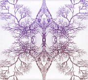 Pen And Ink Framed Prints Prints - Outward Tree 9 Hybrid 4 Print by Brian  Kirchner