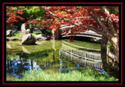 Garden Bridge Posters - Over Springtime Pond Poster by Carol Groenen