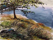 John Art Drawings - Overcast Cove by John  Williams