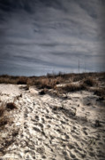 Sandy Beaches Prints - Overcast Dunes Print by Emily Stauring