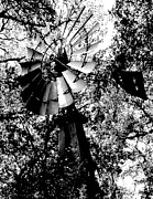 Aermotor Framed Prints - Overgrown Windpump Framed Print by Robert Frederick