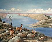 Wyoming Paintings - Overlook by Cynara Shelton
