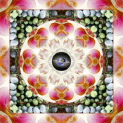 Sacred Geometry Posters - Overtones Poster by Bell And Todd