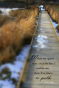 Bible Photos - Overwhelmed by Debra Straub