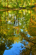 Creek Greeting Cards Prints - Owens Creek in Autumn II Print by Steven Ainsworth