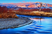 Owens River Metal Prints - Owens River and Eastern Sierra Sunrise Metal Print by Nolan Nitschke