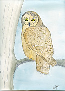 Wild Life Drawings - Owl by Eva Ason