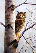 Watercolor And Gouache Paintings - Owl In Birch by Frank Wilson