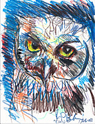 Owls Drawings - Owl  by Jon Baldwin  Art