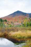 Autumn Framed Prints - Owls Head - White Mountains New Hampshire  Framed Print by Erin Paul Donovan