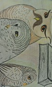 Owls Drawings - Owls  by Janna Baker
