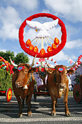 Symbology Metal Prints - Oxen cart Metal Print by Gaspar Avila